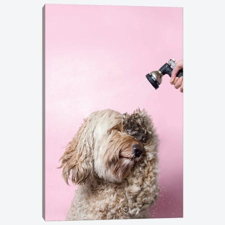 Wet Dog, Lelu Canvas Print #SGM118} by Sophie Gamand Art Print