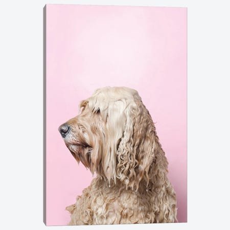 Wet Dog, Lelu Can'T See Canvas Print #SGM119} by Sophie Gamand Canvas Print