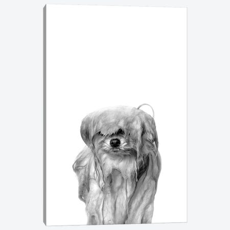 Wet Dog, Pancake, Black & White Canvas Print #SGM123} by Sophie Gamand Canvas Art