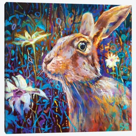 Big Daisies Canvas Print #SGN15} by Sue Gardner Canvas Art