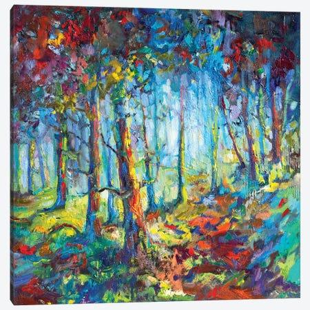 Woodland Walk Canvas Print #SGN22} by Sue Gardner Canvas Art