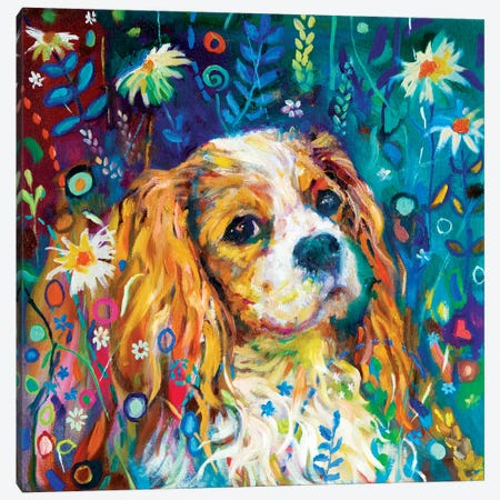 Cavalier Canvas Print #SGN27} by Sue Gardner Canvas Print