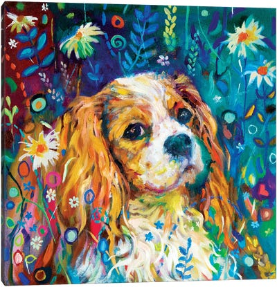 Cavalier Canvas Art Print