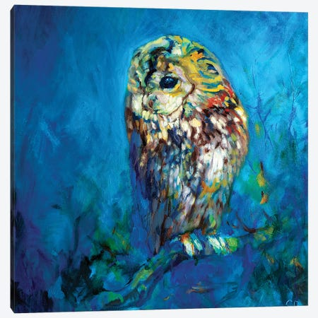 Ivy Roost Canvas Print #SGN36} by Sue Gardner Canvas Art