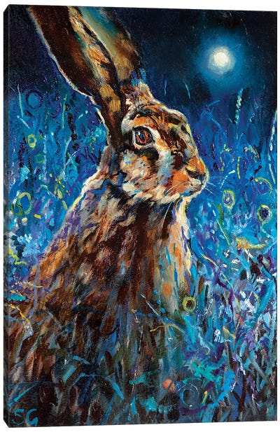 Moonlight Glance Canvas Art Print