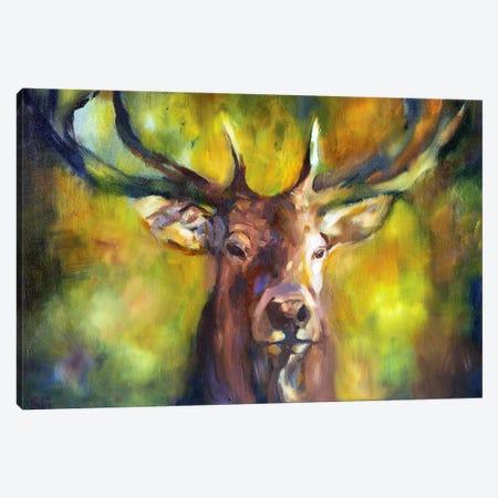 Woodlander Canvas Print #SGN43} by Sue Gardner Canvas Artwork
