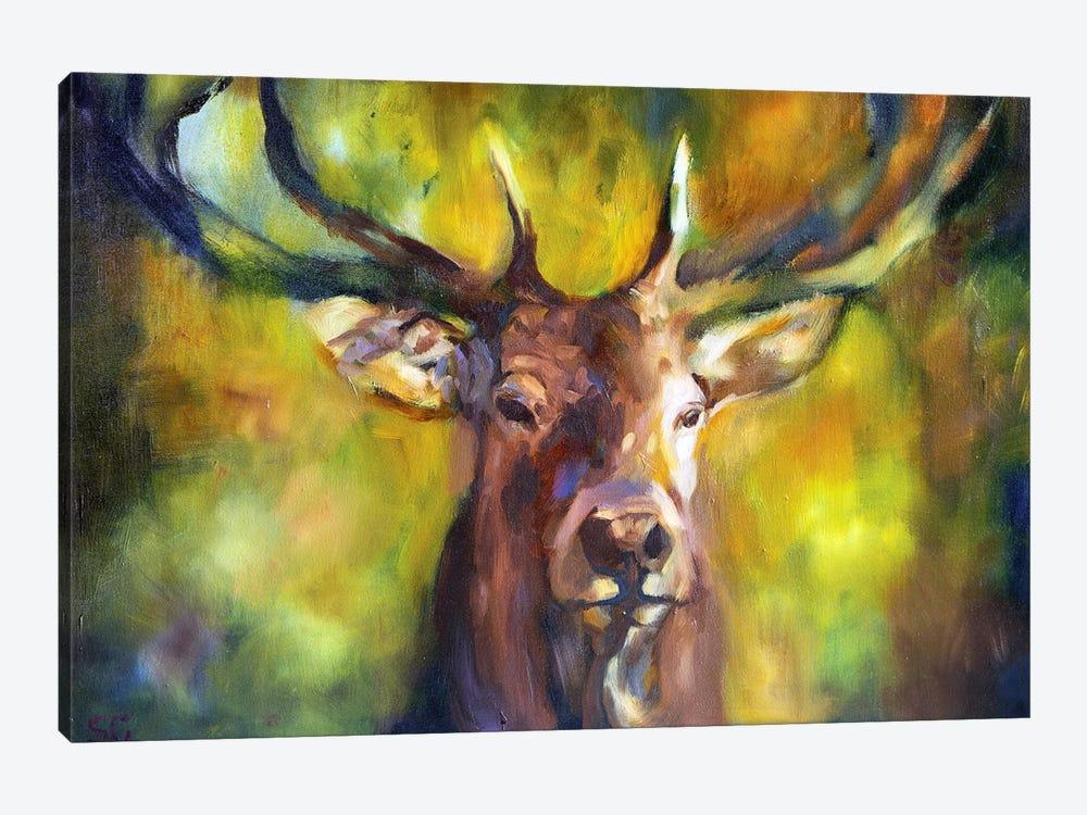 Woodlander by Sue Gardner 1-piece Canvas Wall Art