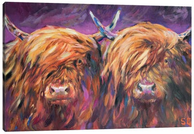 Highland Pair Canvas Art Print