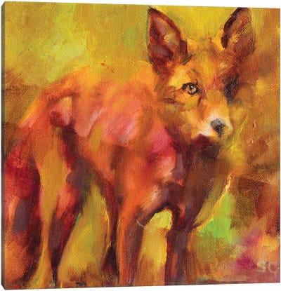 Shy Fox Canvas Art Print
