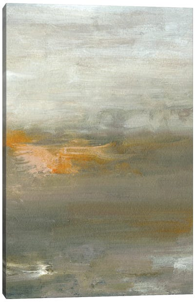 Early Mist II Canvas Art Print