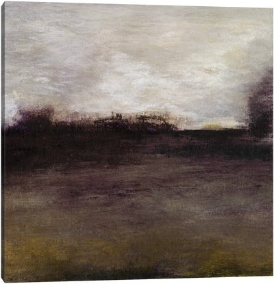 Seasons IV Canvas Art Print