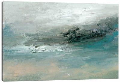 Tidal Pool II Canvas Art Print