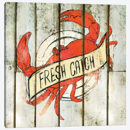 Fresh Catch Square Canvas Print #SGS105} by Sd Graphics Studio Art Print