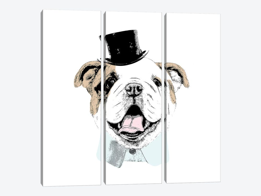 Top Hat Dog by Sd Graphics Studio 3-piece Canvas Wall Art