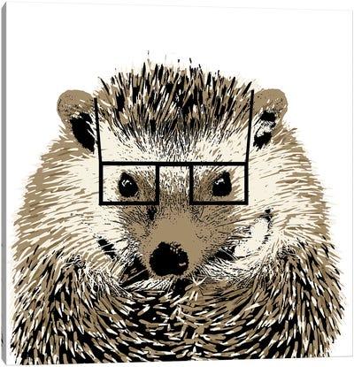 Good Looking Hedgehog Canvas Art Print