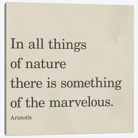 Something Of The Marvelous Canvas Print #SGS161} by Sd Graphics Studio Canvas Wall Art