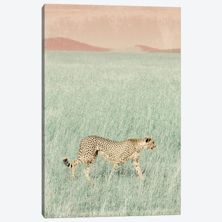 Cheetah in the Wild Canvas Print #SGS54} by Sd Graphics Studio Canvas Print