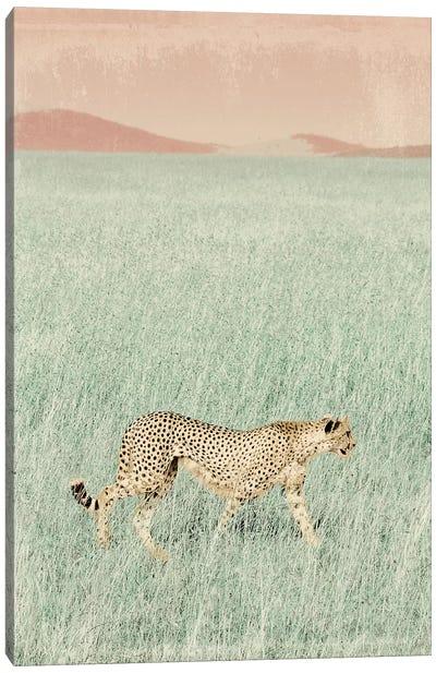 Cheetah in the Wild Canvas Art Print
