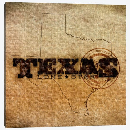 Texas Lone Star Canvas Print #SGS66} by Sd Graphics Studio Canvas Art