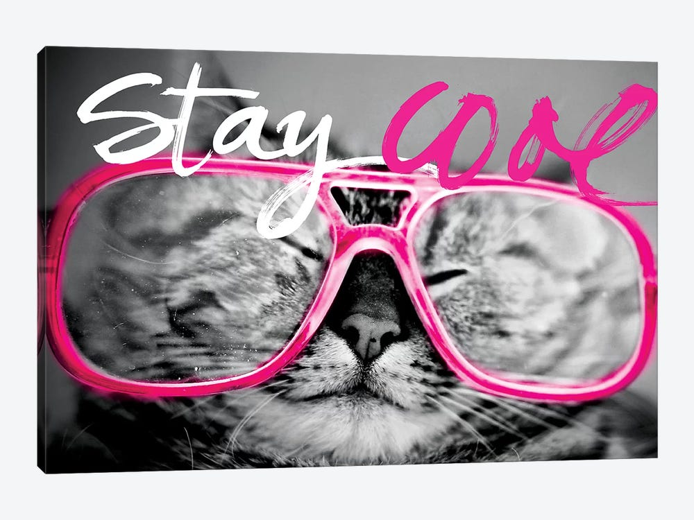 Stay Cool Cat by Sd Graphics Studio 1-piece Canvas Artwork