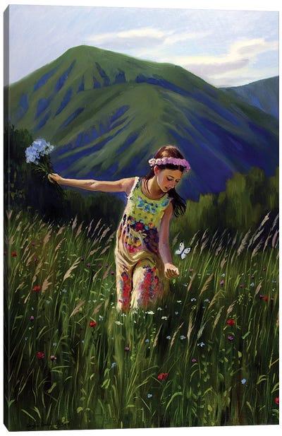 The Beautiful Summertime In Carpathians Canvas Art Print