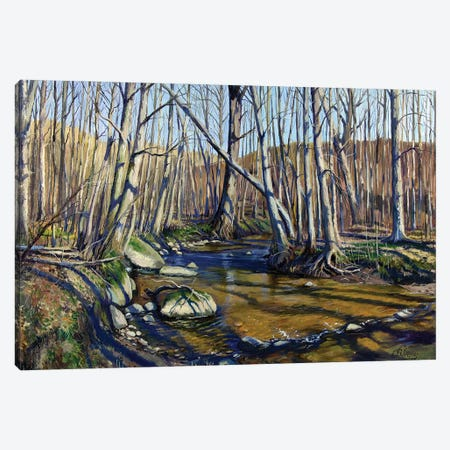 Forest River In Early Spring Canvas Print #SGT21} by Serghei Ghetiu Canvas Wall Art