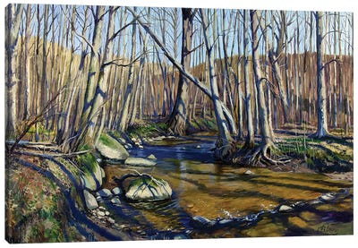 Forest River In Early Spring Canvas Art Print