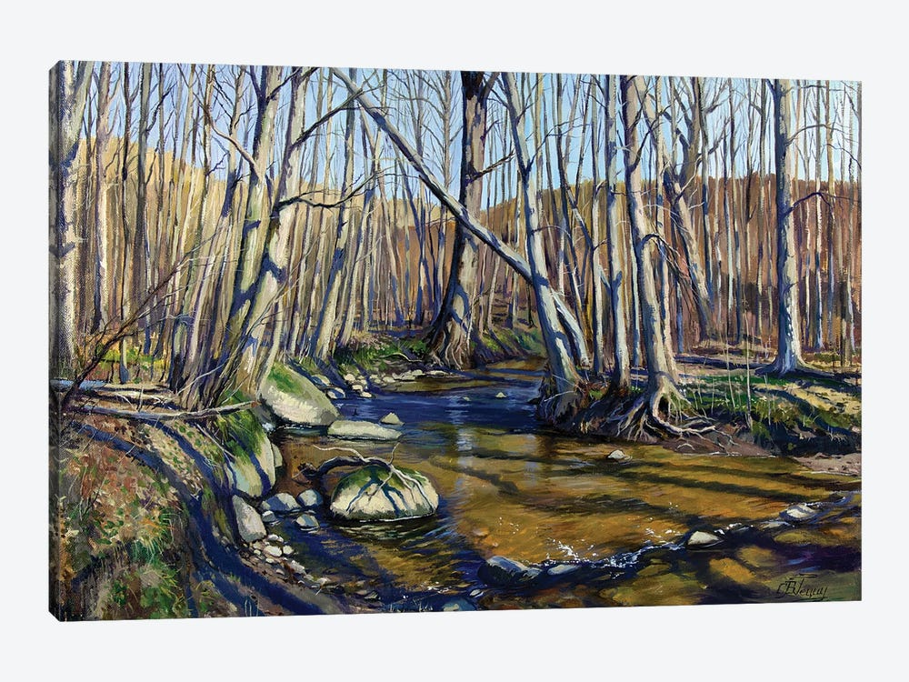 Forest River In Early Spring by Serghei Ghetiu 1-piece Canvas Print