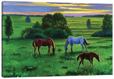 Summertime II Canvas Art Print