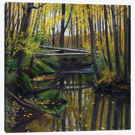The Golden Autumn Colors Canvas Print #SGT30} by Serghei Ghetiu Canvas Art Print