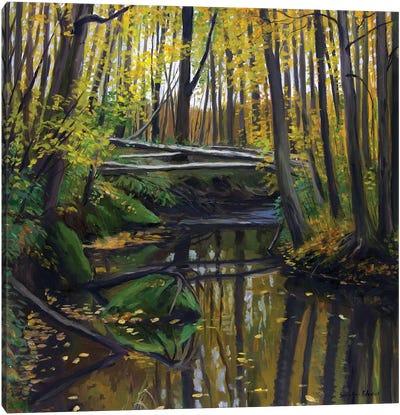 The Golden Autumn Colors Canvas Art Print