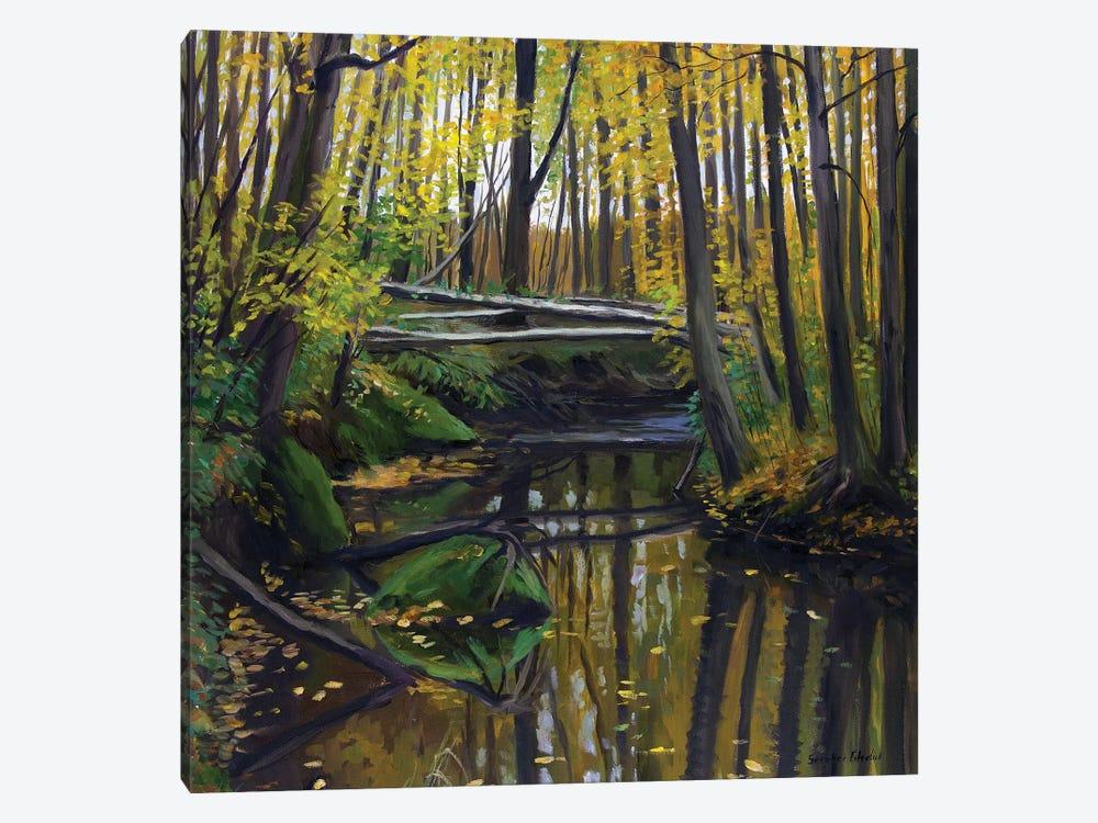 The Golden Autumn Colors by Serghei Ghetiu 1-piece Art Print