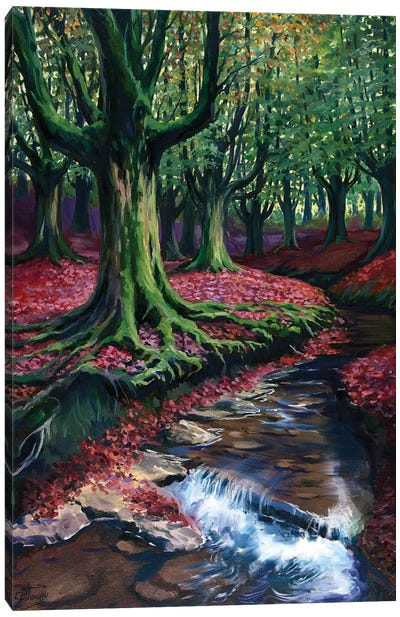 Mystical Forest II Canvas Art Print