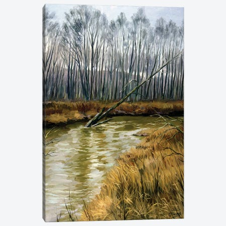 The Moods Of The Nature, Snowless February Canvas Print #SGT35} by Serghei Ghetiu Canvas Artwork