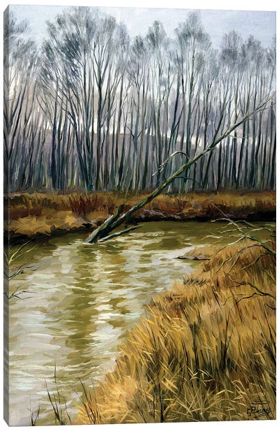 The Moods Of The Nature, Snowless February Canvas Art Print