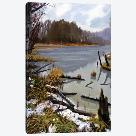 The Last Snow Canvas Print #SGT36} by Serghei Ghetiu Canvas Artwork