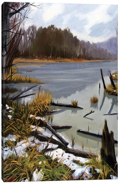 The Last Snow Canvas Art Print