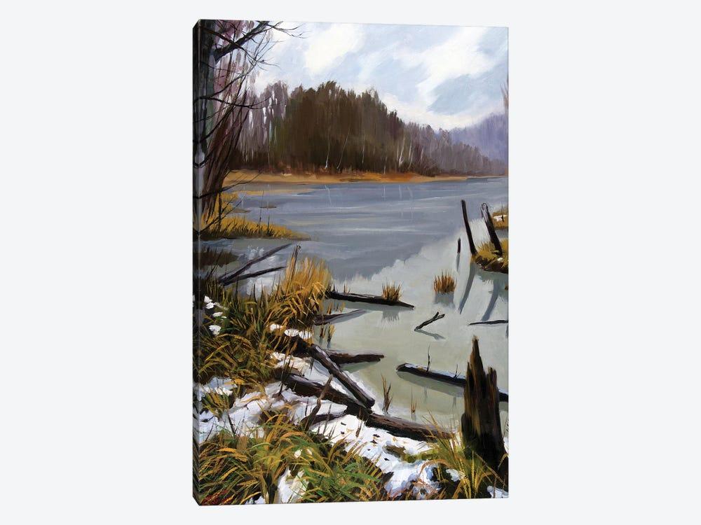 The Last Snow by Serghei Ghetiu 1-piece Canvas Art Print