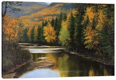 The New One II Canvas Art Print
