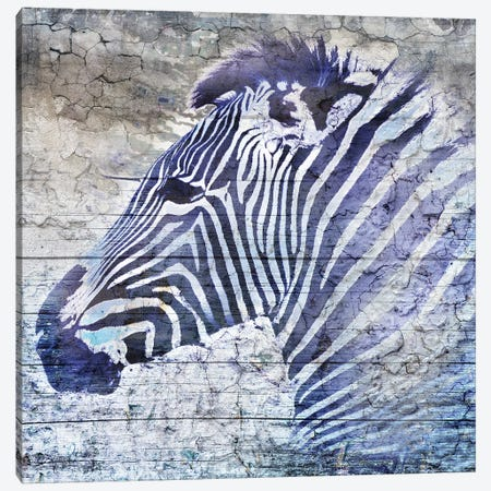 Purple Zebra Canvas Print #SGU2} by Surma & Guillen Art Print