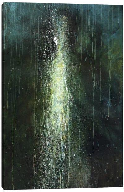 Rebirth Canvas Art Print