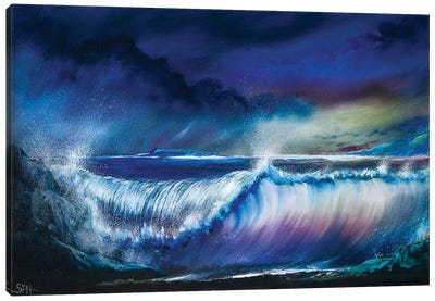 The Emotion Of The Ocean Canvas Art Print
