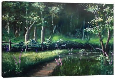 Toward the Station Pond Canvas Art Print