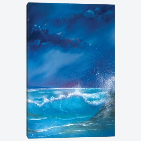 Break On The Rocks Canvas Print #SHC5} by Simon Hackney Canvas Art
