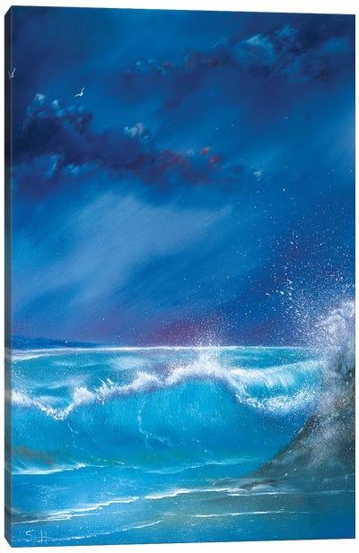 Break On The Rocks Canvas Art Print
