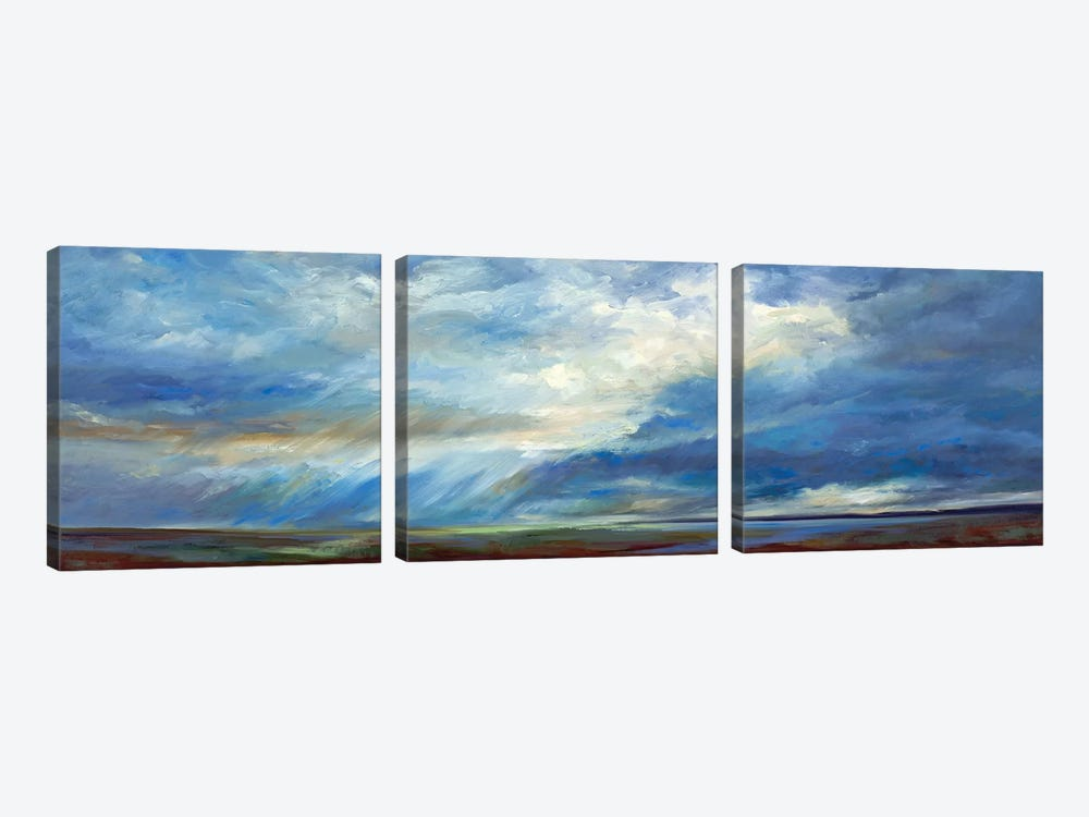 Heavenly Light by Sheila Finch 3-piece Canvas Artwork
