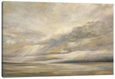 Storm On The Bay Canvas Art Print