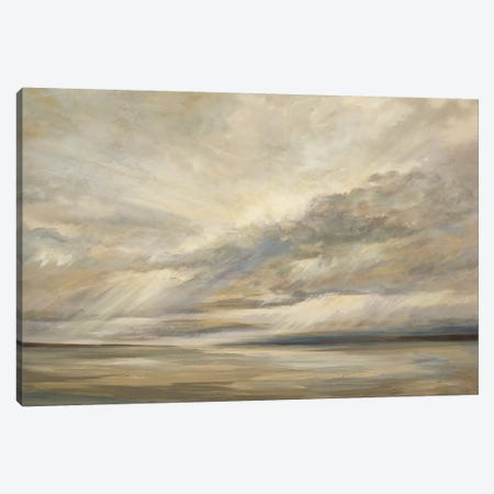 Storm On The Bay Canvas Print #SHE13} by Sheila Finch Canvas Art