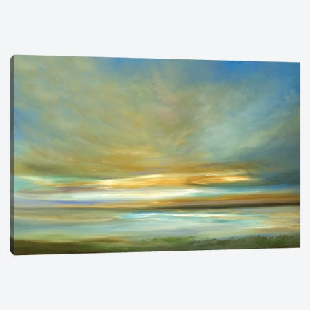 Light On The Dunes Canvas Print #SHE1} by Sheila Finch Art Print
