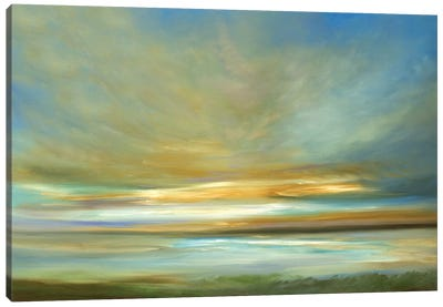 Light On The Dunes Canvas Art Print